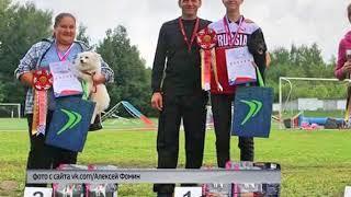 Ярославна стала победителем Чемпионата России по кинологическому спорту