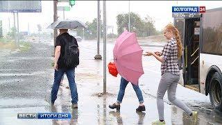 Зачехлять ли волгоградцам зонтики?
