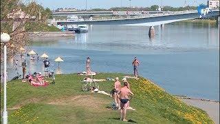 Новгородскую область накрыла аномальная жара