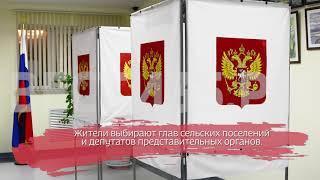 Выборы проходят в 10 районах Вологодской области