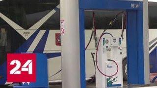 Из Китая стартовал самый протяженный автопробег для машин на газомоторном топливе - Россия 24