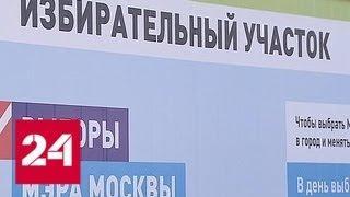 Дачники смогут проголосовать на выборах мэра Москвы не отходя от огорода - Россия 24
