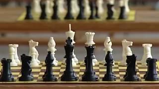 Вологодские шахматисты – бронзовые призеры международного фестиваля