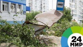 Санкт-Петербург приходит в себя после страшного урагана - МИР 24