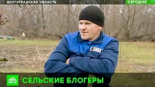 Семья блогеров из Волгоградской области учит страну солить арбузы и чистить коровник