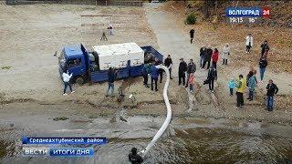 В Ахтубу выпустили мальков белого амура