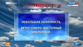 Погода в Алтайском крае на 9 августа