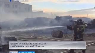 В Советске потушили пожар на целлюлозно-бумажном комбинате