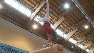 Иностранные гимнасты высоко оценили спортивные условия в Пензе