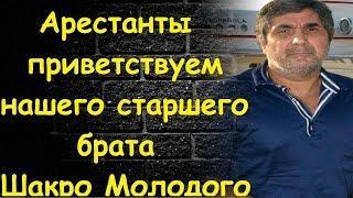 Видео приветствия ворами Шакро Молодого в тюрьме Поразило зрителей и попало в новостные каналы РФ