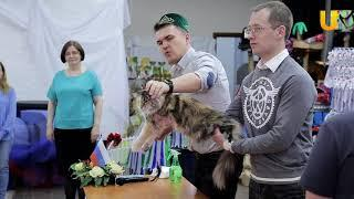 Глазами животных #304. Оценка кошек на выставочном ринге «Кубок Башкортостана»