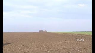Аграрии Ставропольского края засеют озимыми 1,9 миллиона гектаров полей