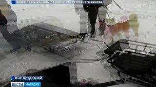 Рыбаков спасли со льдины сотрудники регионального МЧС