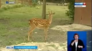 Прогулки по экотропам предложат ставропольцам