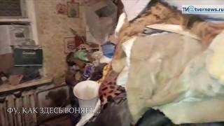 Зоозащитники забрали у Иры-голодомор последнюю собаку