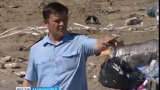В Калининграде нашли незаконную свалку