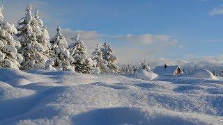 В Югре станут продавать снег