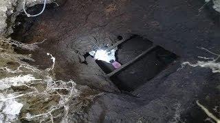 В Уфе хаски провалилась в яму: видео спасения