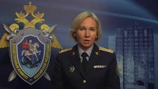 «Интерфакс»: СК не допрашивал экс-министра МЧС Владимира Пучкова
