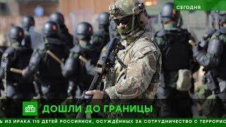 Новости Сегодня на НТВ Вечерний выпуск 14.11.2018