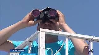 Власти проинспектировали калининградские пляжи