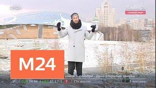 """""""Утро"""": слабый снег ожидается в столичном регионе 26 ноября - Москва 24"""