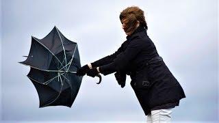 В последний день весны Югру будет штормить
