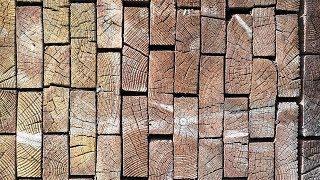 В Югре создадут кластер по глубокой переработке древесины