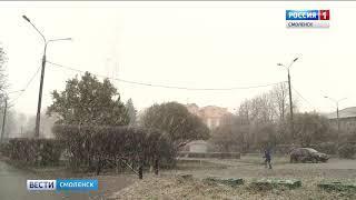 На Смоленщине выпал первый снег