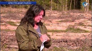 Ольга Рогозина из Крестецкой деревни Вины рассказала о профессии лесничего
