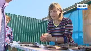 Уникальные артефакты найдены на территории игорной зоны «Приморье»