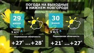 Прогноз погоды. Летняя жара не отступит