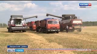 В Пензенской области намолочено 1 млн. 300 тыс. тонн зерна