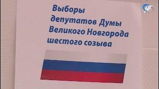 Началось досрочное голосование на выборах в Думу Великого Новгорода