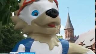 В Калининграде установили фигуры волка Забиваки