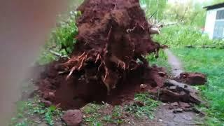 Последствия воскресного урагана в Кирове