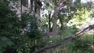 Во Владивостоке мародёры распилили сгоревший дом.