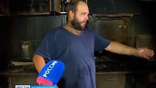 В Гурьевском районе сгорел приют для бездомных животных, 7 собак и 4 кошки погибли в огне