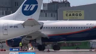 Во время ЧМ в Храброво запланировано более 140 дополнительных рейсов