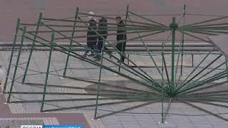 В Калининграде начали монтировать новогоднюю ёлку