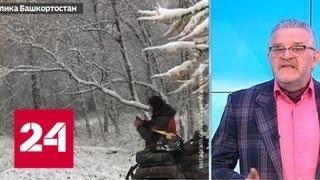 """""""Погода 24"""": в Москву идет бабье лето - Россия 24"""