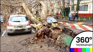 От столицы до Урала: снег и заморозки пришли на смену урагану
