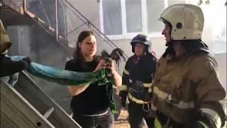 Пожарные спасали гадов. В центре города тушили зоопарк