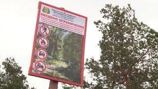 В Волгоградской области сохраняется чрезвычайная пожароопасность