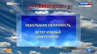 В Алтайский край пришла аномальная жара