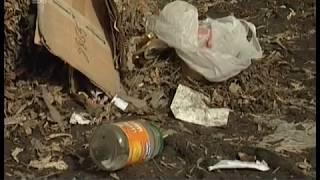 """Центр Челябинска оброс стихийными свалками. Коммунальщики винят в грязи """"ГорЭкоЦентр"""""""