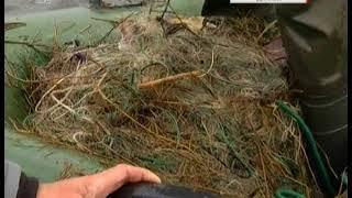 После репортажа 31 канала на озере Сугояк приостановили промышленный вылов рыбы