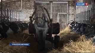 Новосибирские фермеры предупредили об опасности импортного сухого молока
