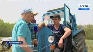 Студенты Чугуевского сельскохозяйственного колледжа демонстрируют свои навыки