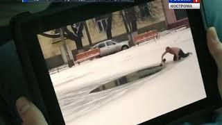 Костромич, спасший собаку на Шаговском пруду, стал одним из героев клипа группы «ДДТ»